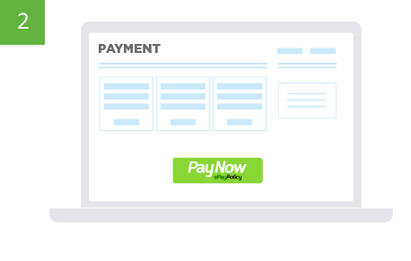 Paynow button on website